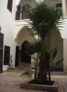 liste des hotels marrakech et riads marrakech. Black Bedroom Furniture Sets. Home Design Ideas